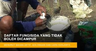 fungisida yang tidak boleh dicampur