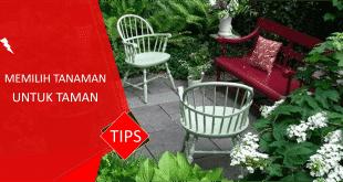 tips memilih tanaman untuk taman