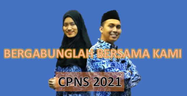 ALUR CPNS 2021
